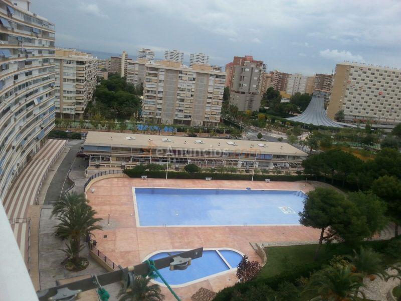 Apartamento en benidorm 1584820 - Compro apartamento en benidorm ...